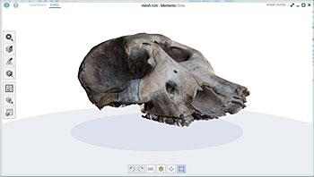 mesh rcm-memento-mamut-1622